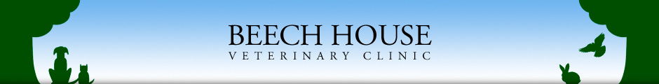 Beech House Veterinary Clinic